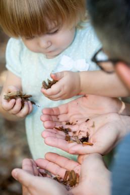 Foto Kind sammelt Erde, Hände