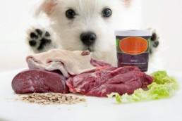 Produktfotografie Müllers Hundenahrung kleiner Hund mit Hundefutter Barfmenue in Pforzheim Birkenfeld